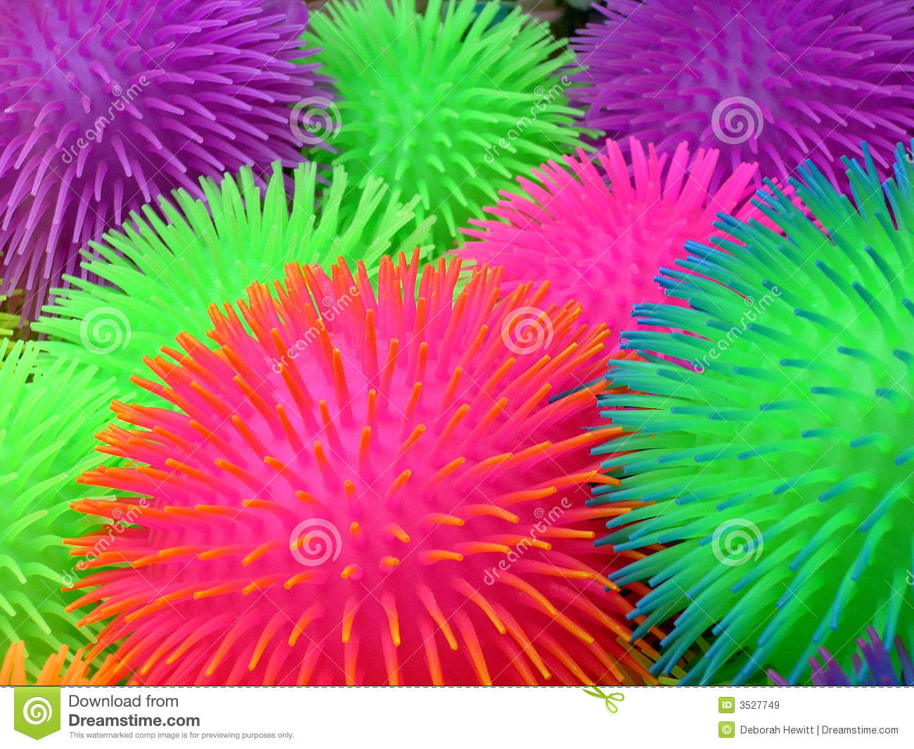 Purple Squishy Ball : Squishy Balls With Spines Royalty Free Stock Images - Image: 3527749