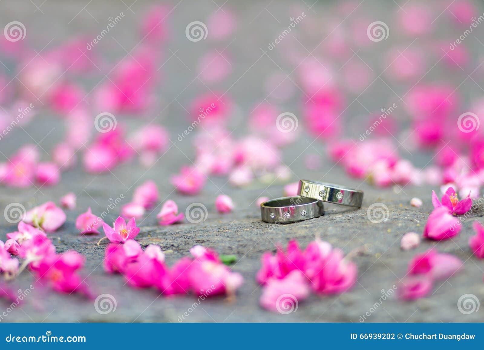 Srebne obrączki ślubne i menchia kwiaty na kamiennym tle