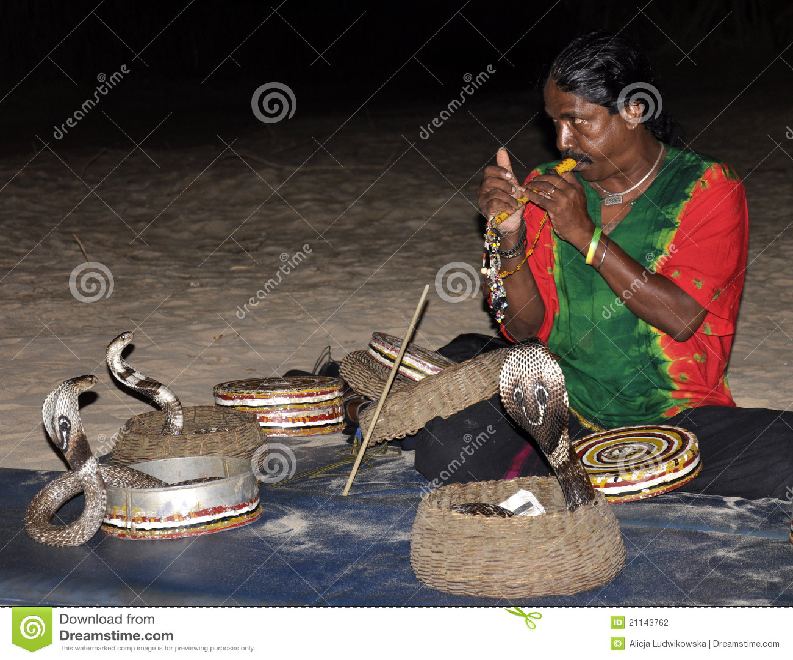Sri змейки выставки lanka