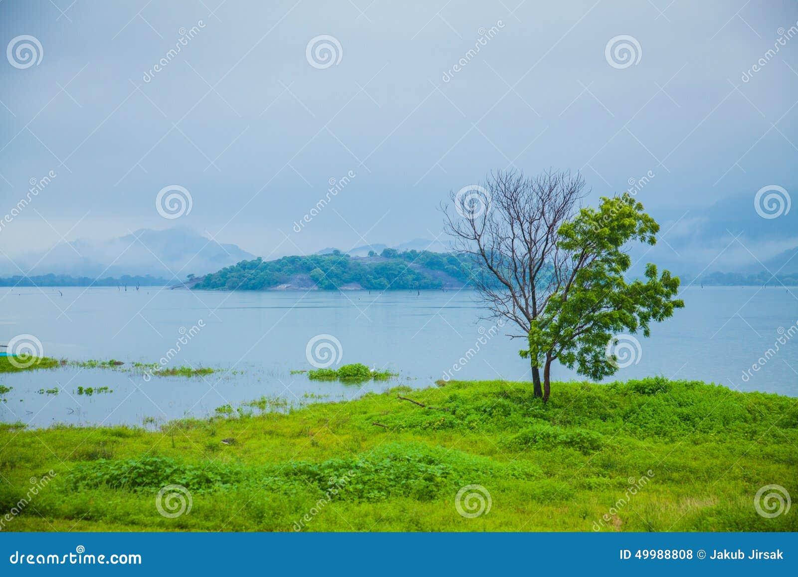 Sri Lanka-aard