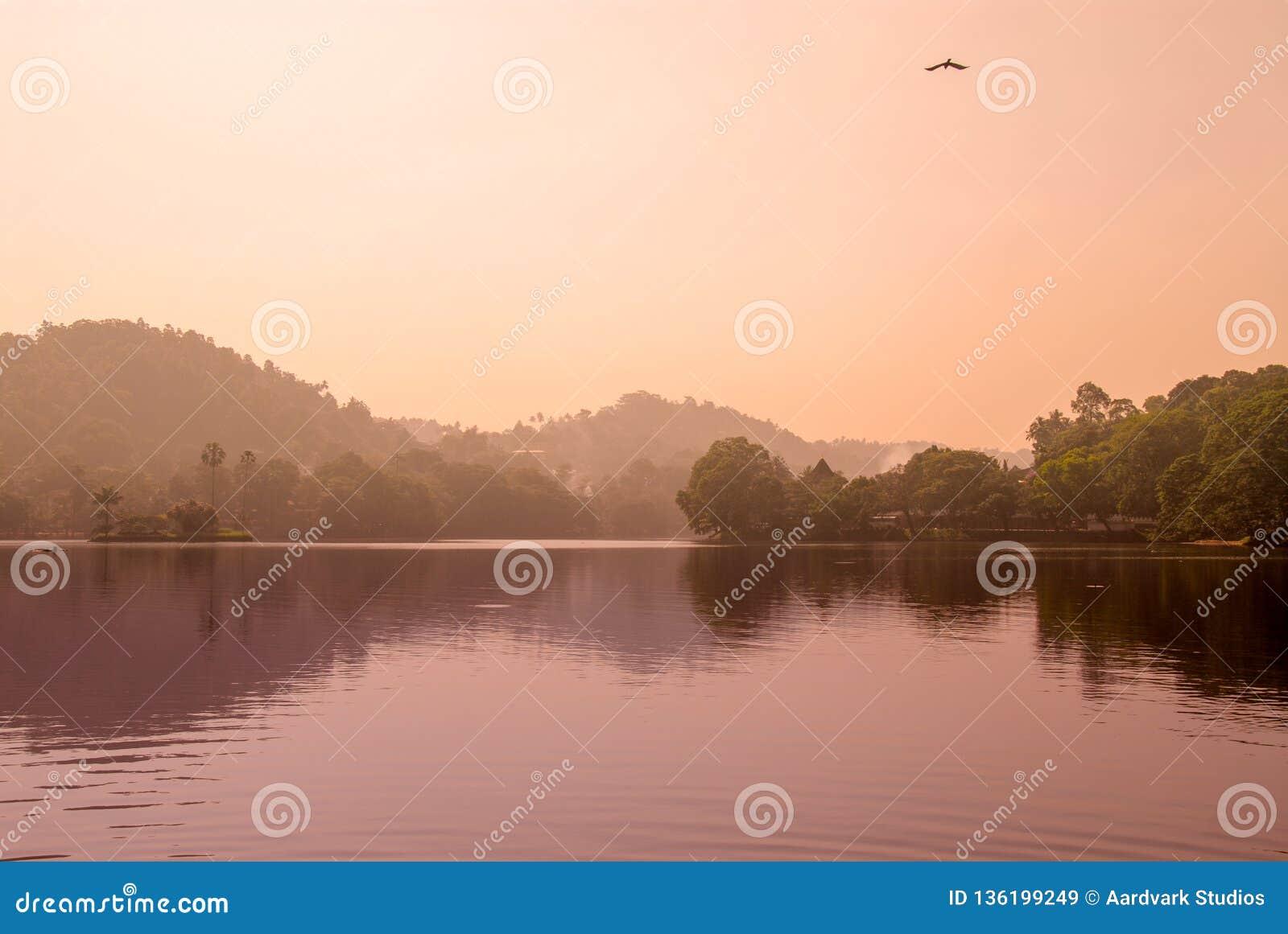 Sri Lanka kandy tempelsjö