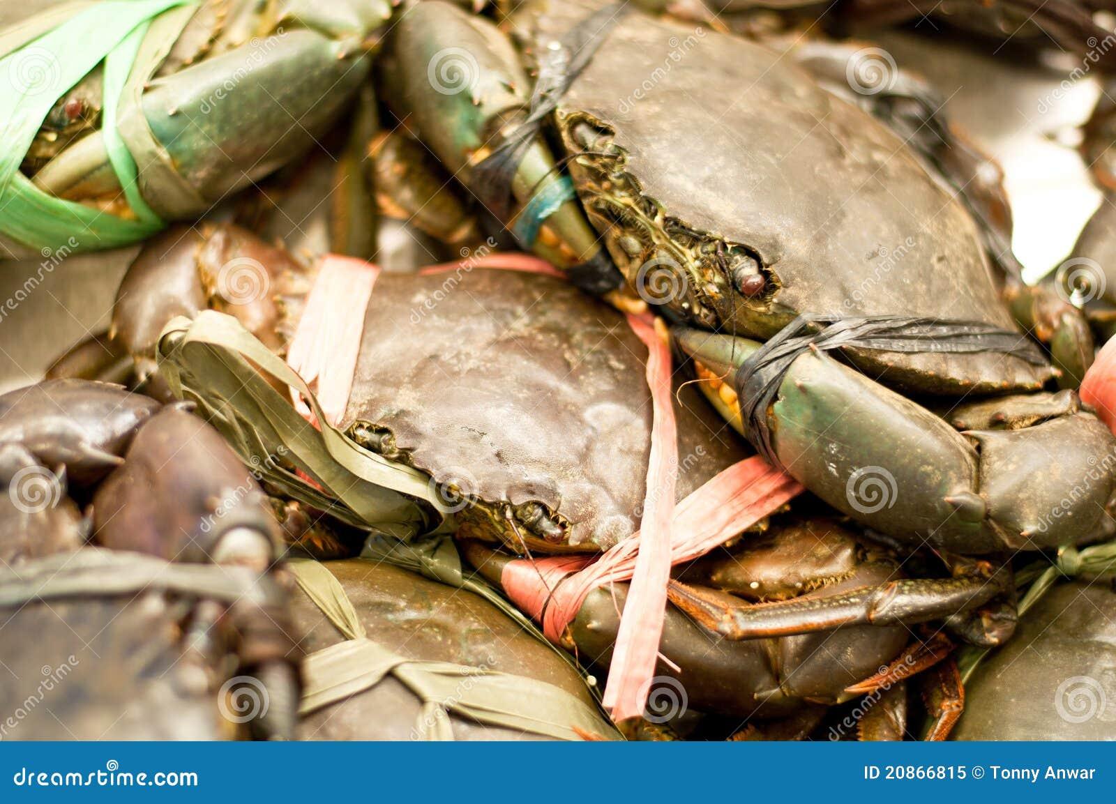 crab fresh lankan market mud ...