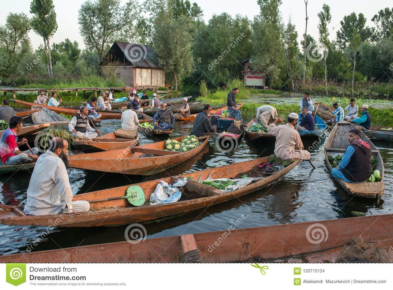 Unidentified vegetable sellers taking their produce to the floating market early in the morning on Dal Lake in Srinagar, Kashmir.