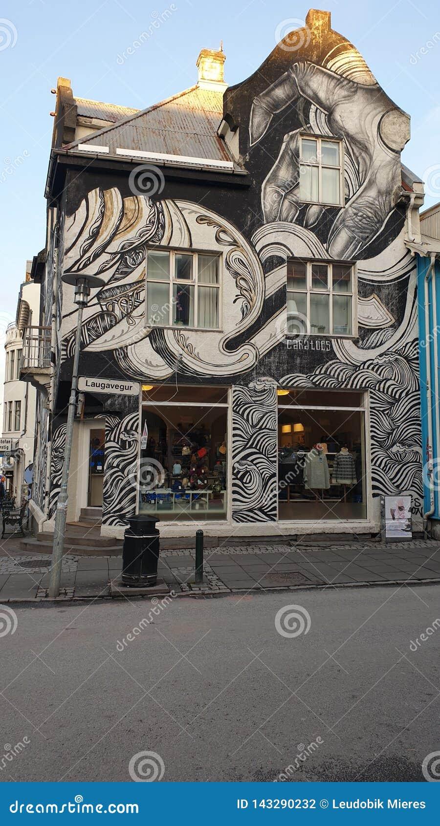 Städtisches Kunst Stadtzentrum Island