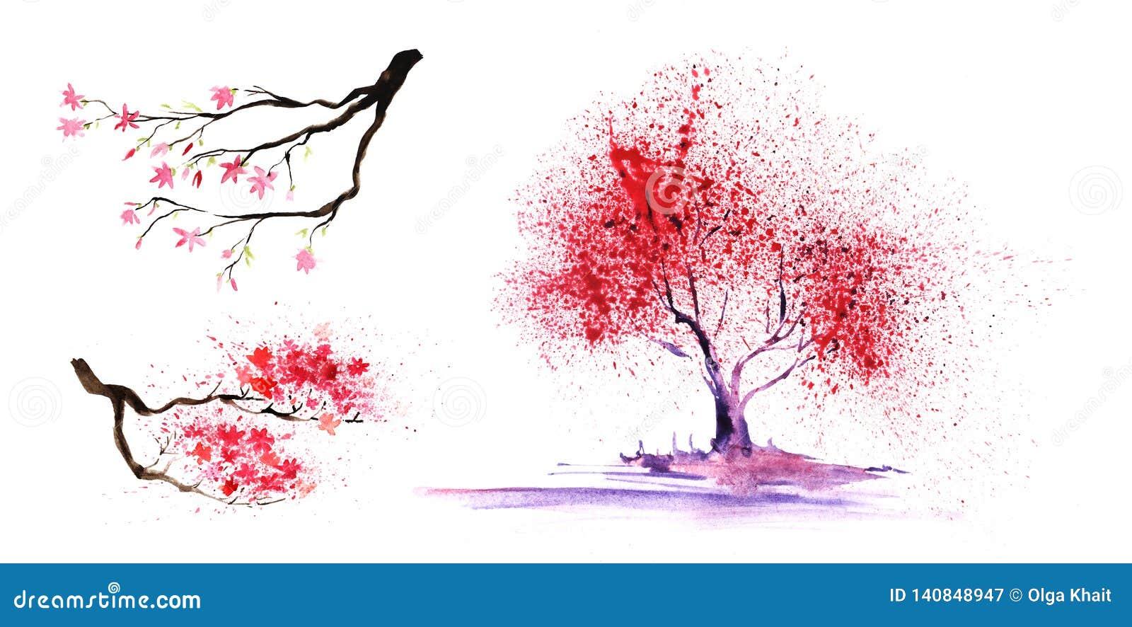 Ställ in av thtreeeelements Abstrakt färg-träd och filialer med en storartad krona Hand-dragen vattenfärgillustration