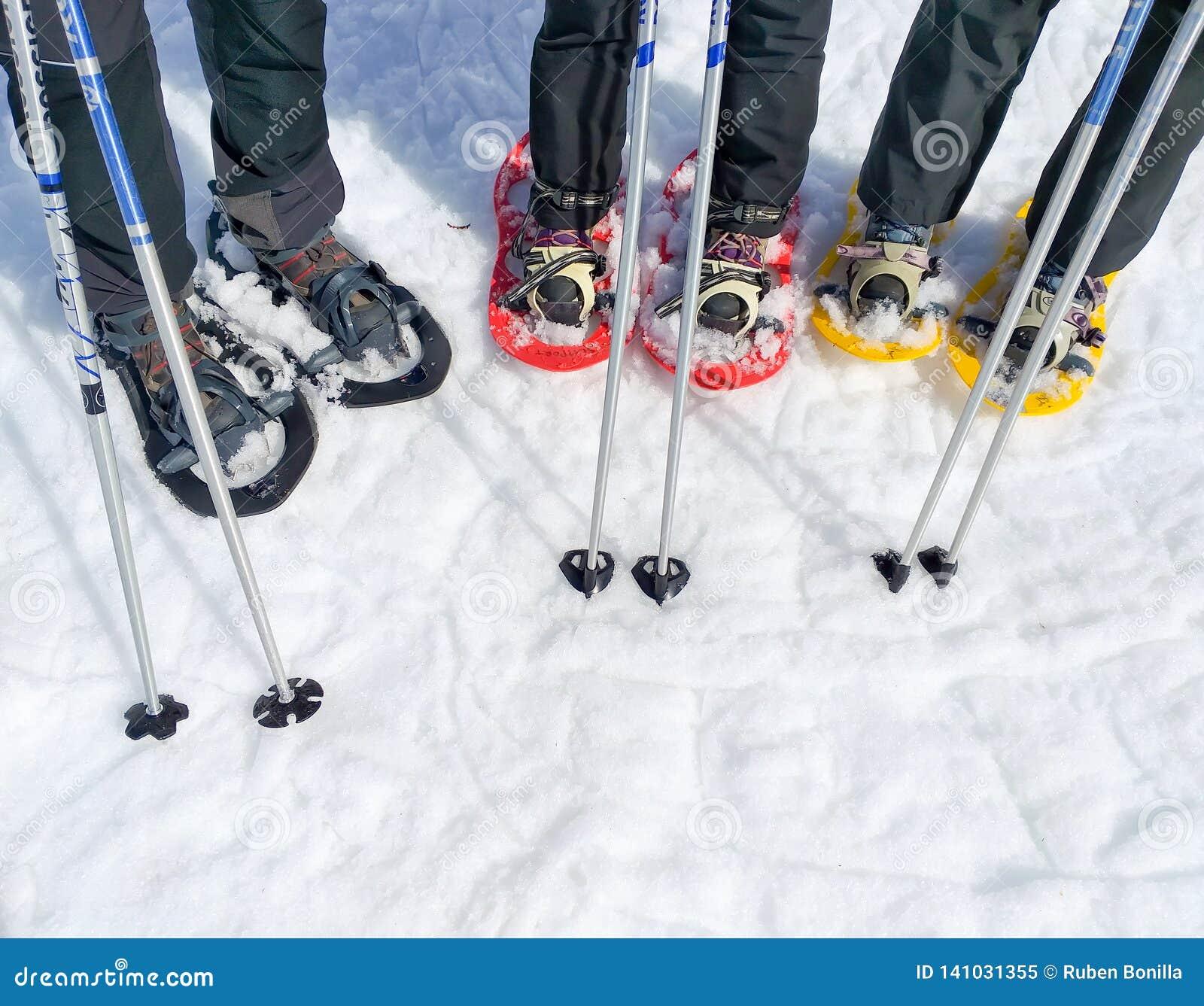 Ställ in av tre par av snöskor, eller racket av snö och två skidar poler av en grupp av sportfolk på snön som är klar att gå på
