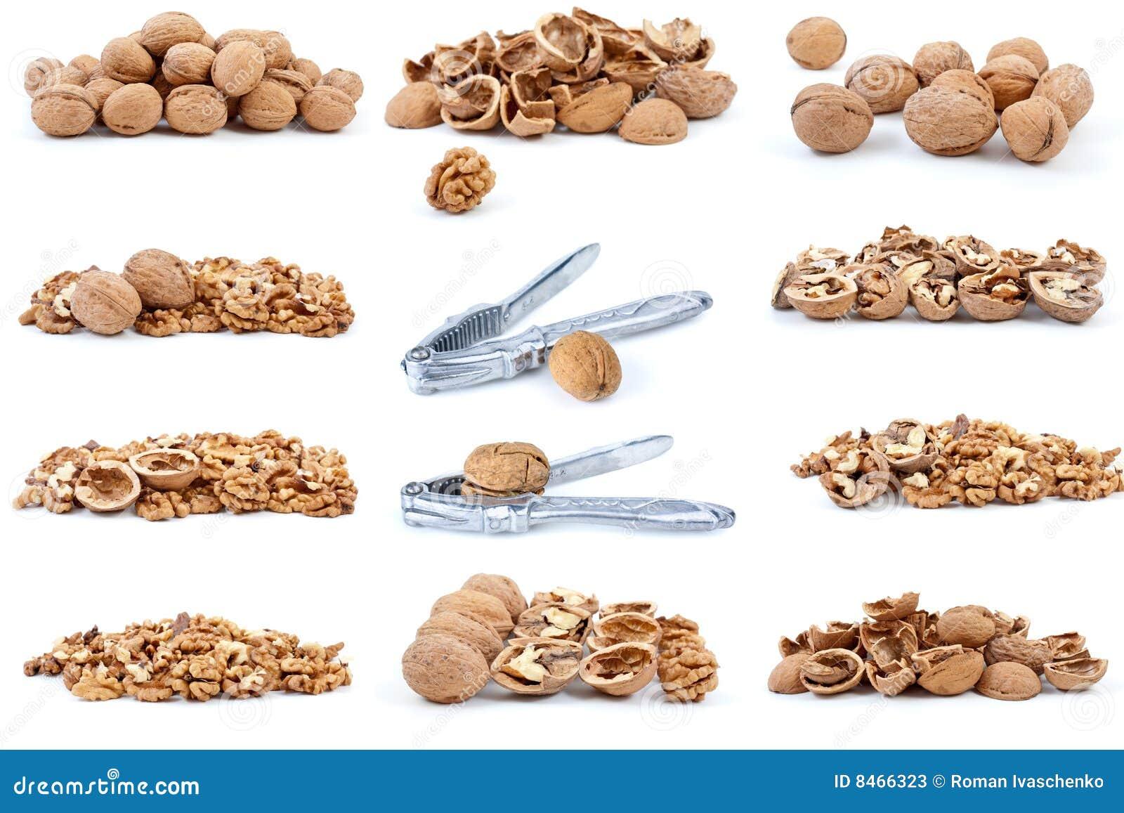 Ställ in valnötter