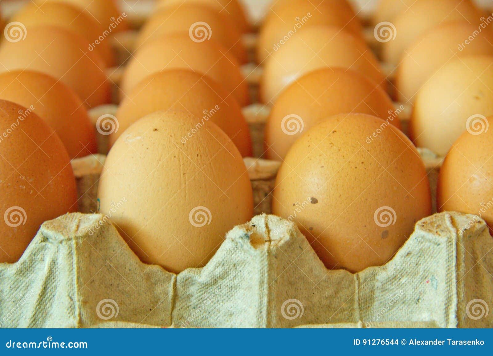 Stäng sig upp av många ägg i rad, perspektivsikten,