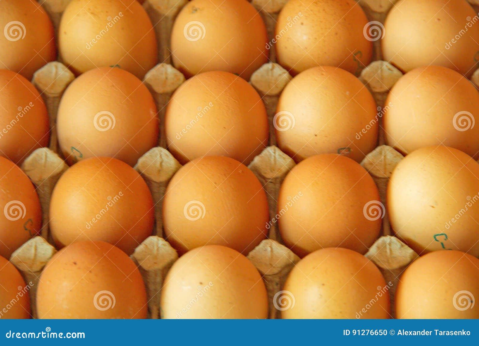 Stäng sig upp av många ägg i rad, perspektivsikten