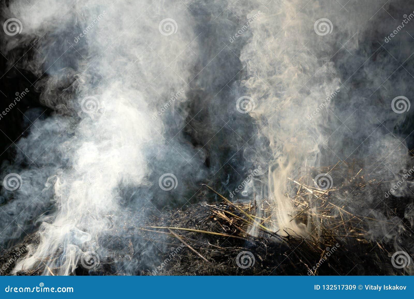 Stäng sig upp den nästan färdiga brandbränningbunten av rissugrör