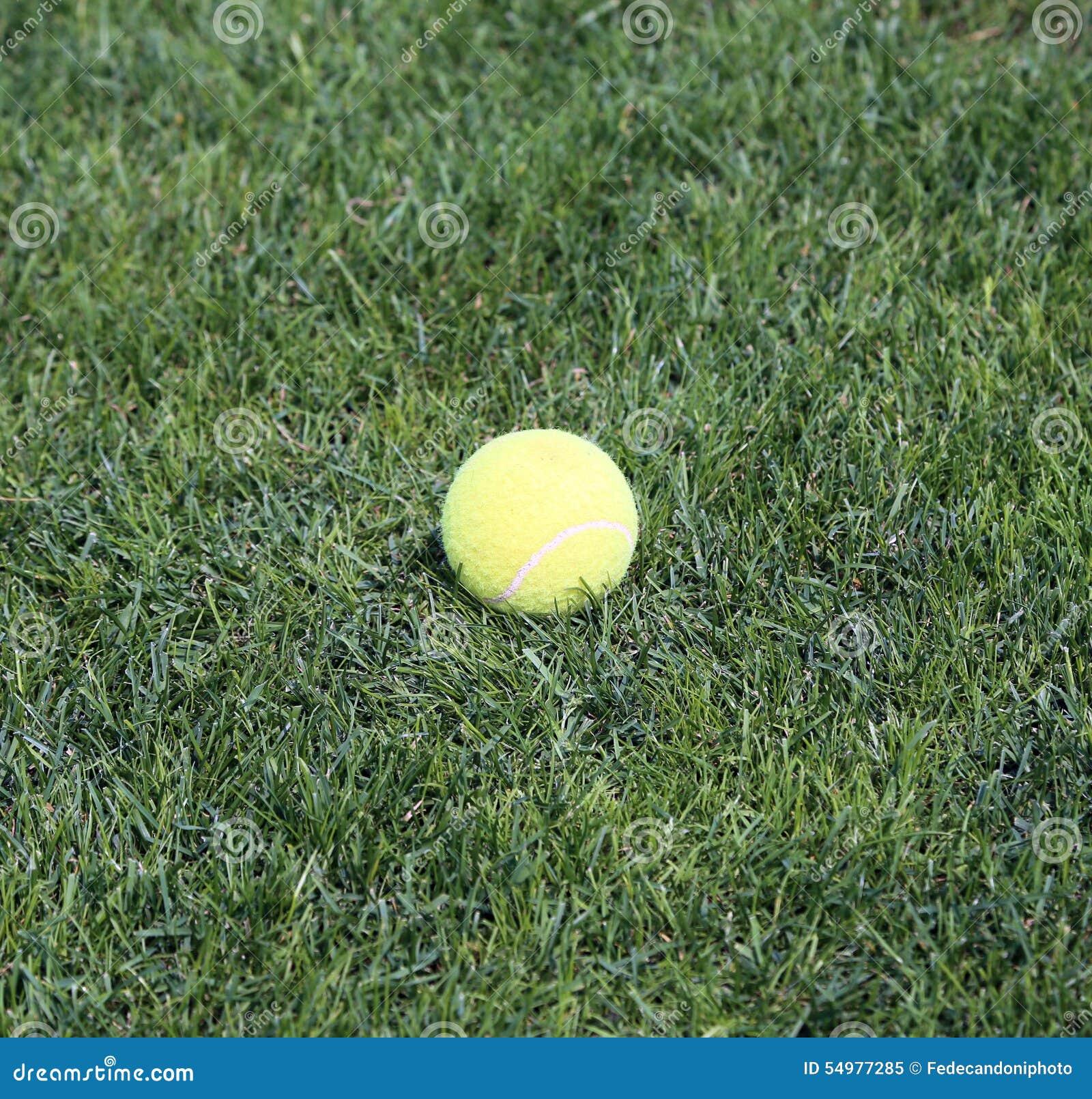 Stäng sig upp gul tennisboll på grönt gräs