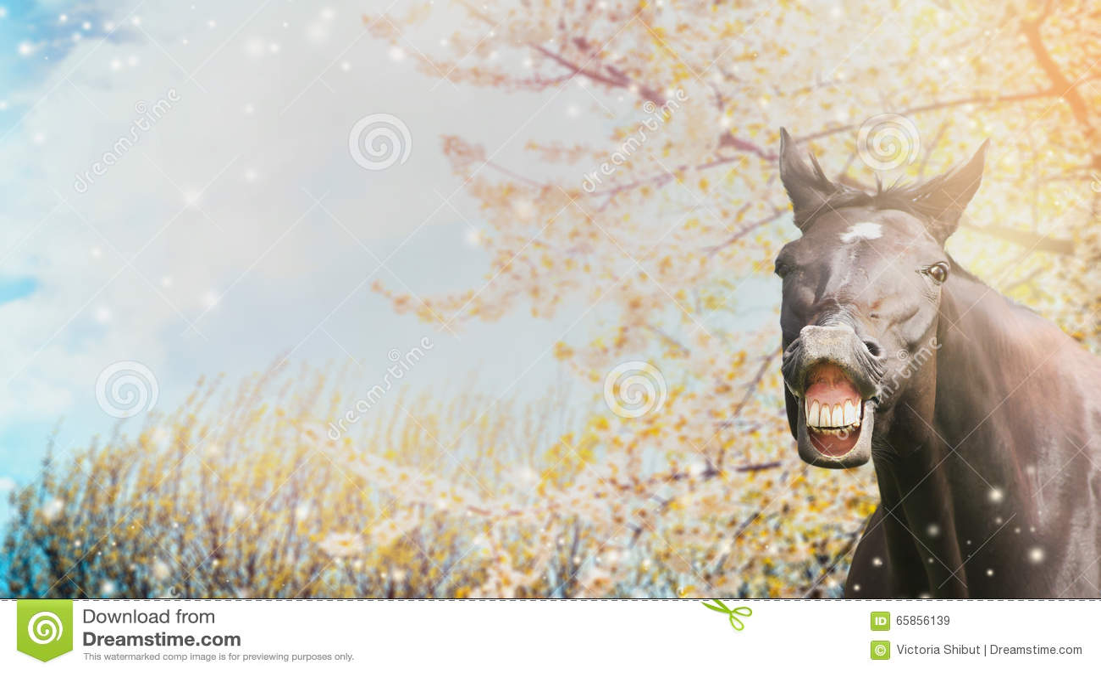 Stående av en häst med ett leende på bakgrund av vårblomningnaturen