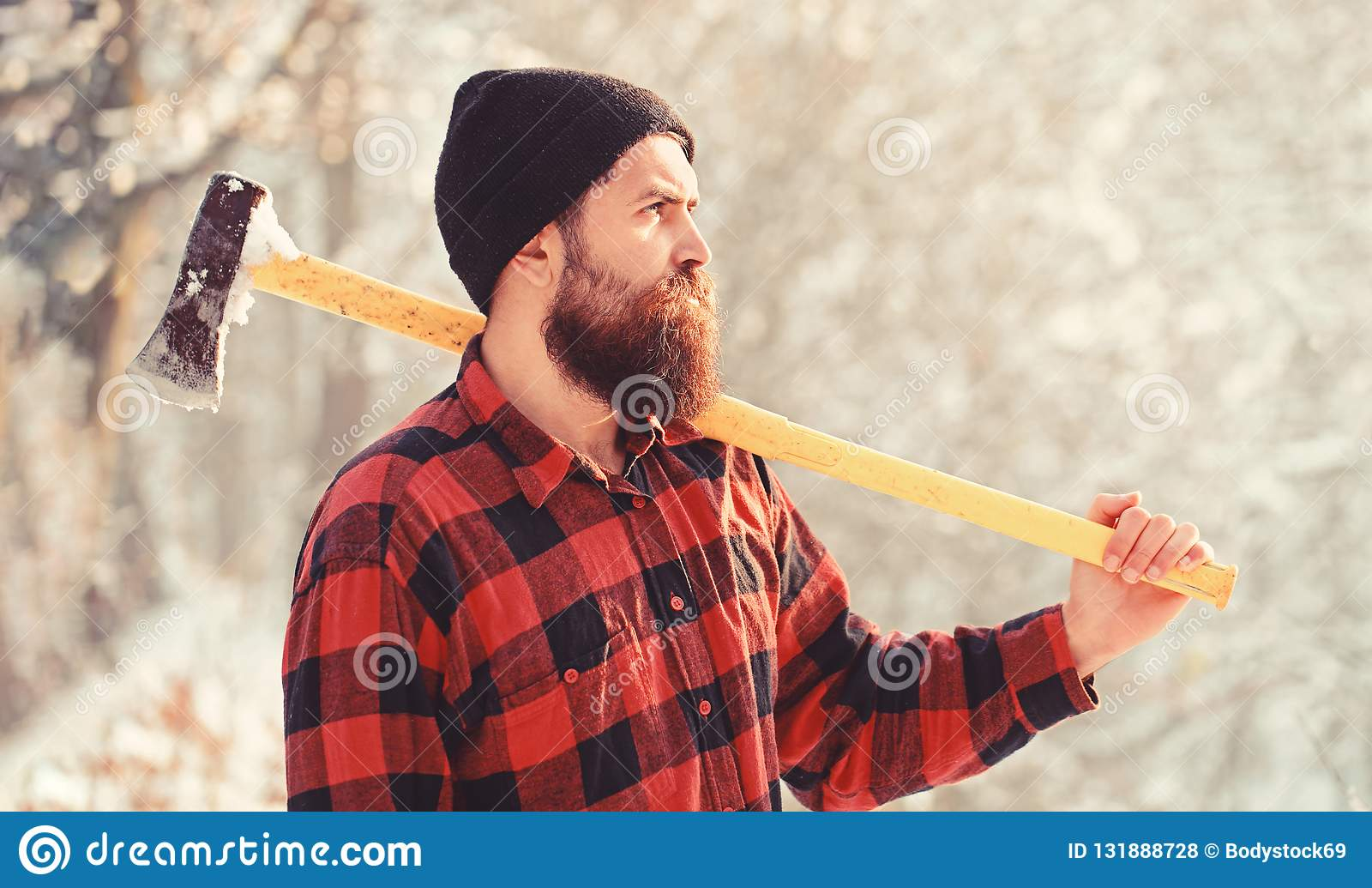 Stående av en skäggig skogsarbetare Skogsarbetare i träna med en yxa Skäggig man i hatt med en handyxa stilig man