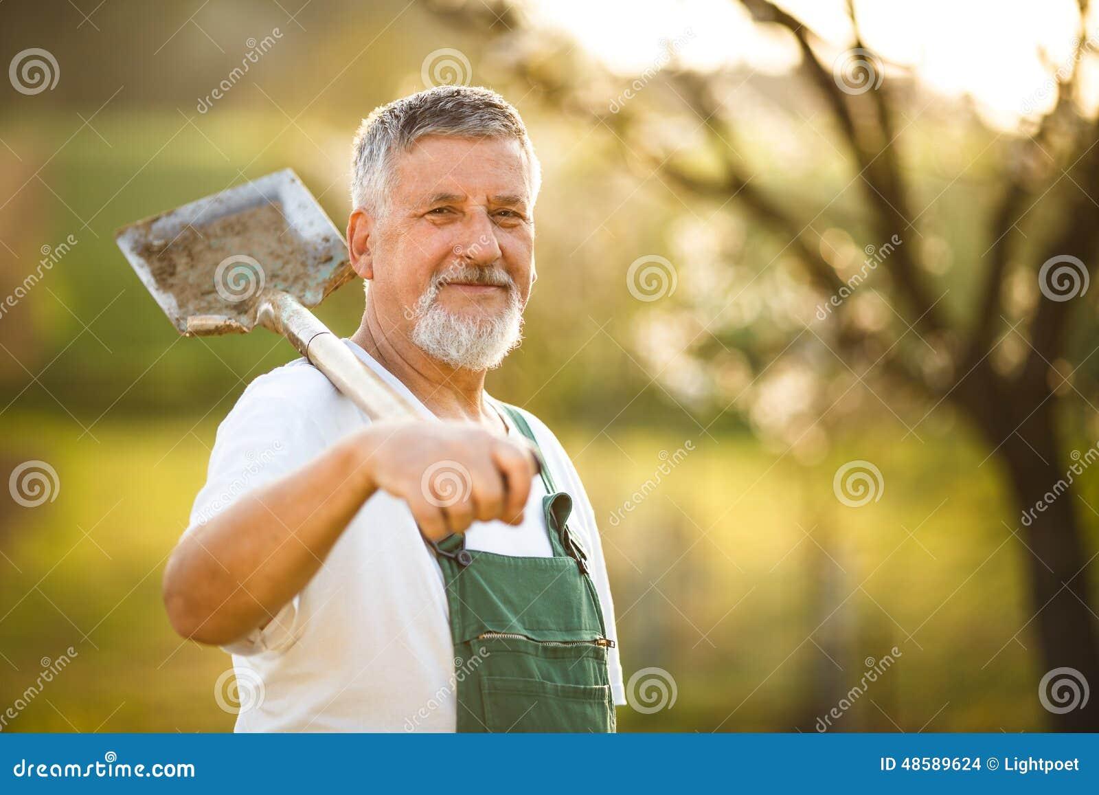 Stående av en stilig hög man som arbeta i trädgården i hans trädgård,