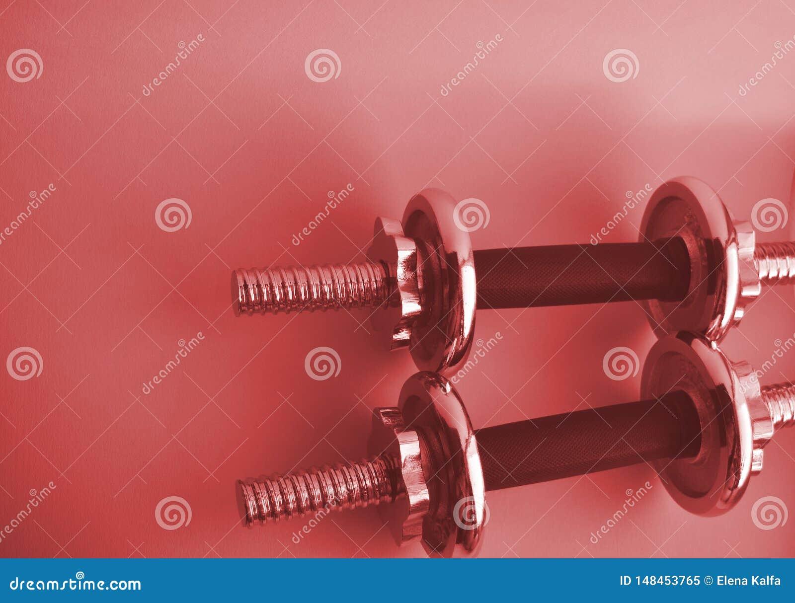 Stål 2 rosa hantlar med kopieringsutrymme Sportutrustning f?r bodybuilding Kondition sportbegrepp