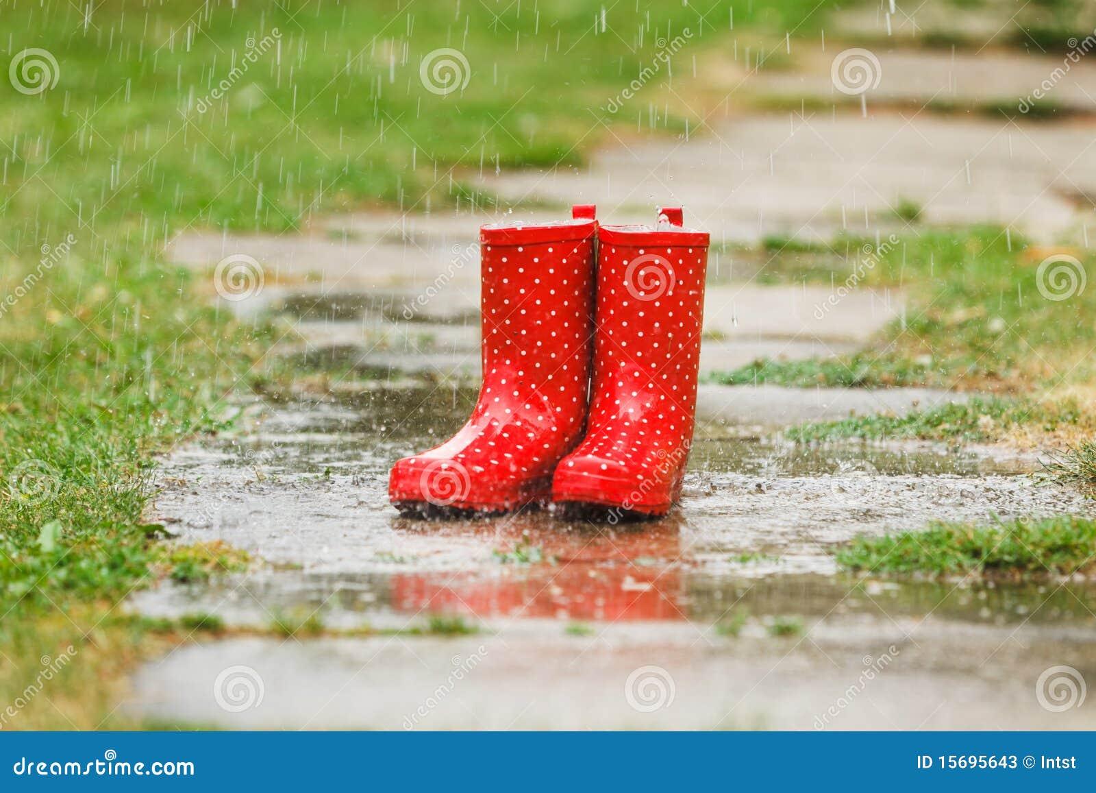 Skor För Regn För Höstpumpa Röd Och Trä Med Leavsbakgrund