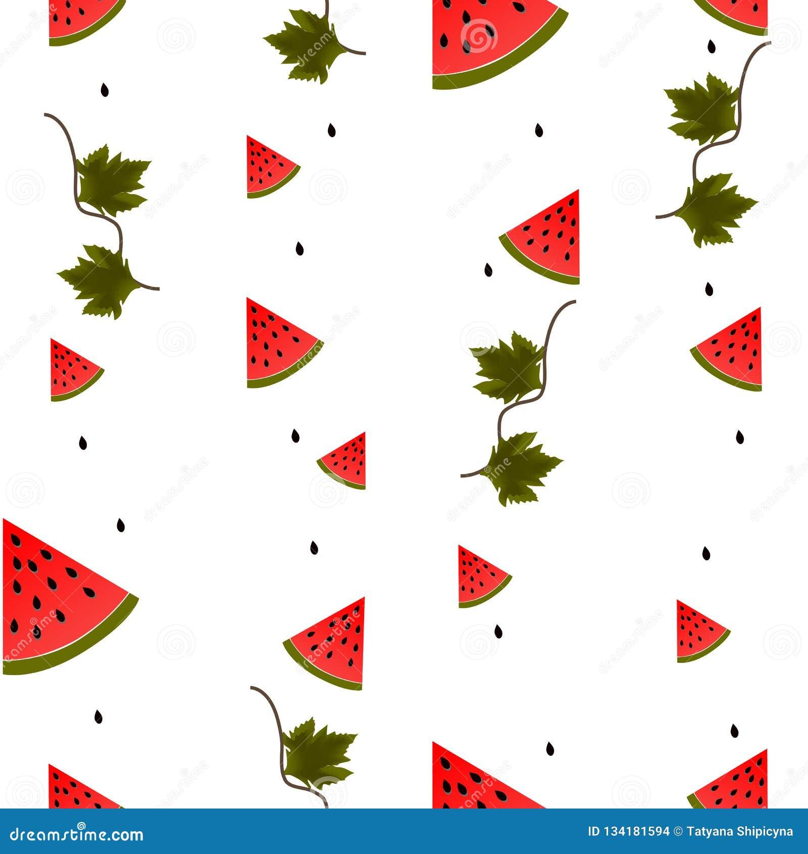 Stücke, Blätter und Samen der Wassermelone auf weißem Hintergrund
