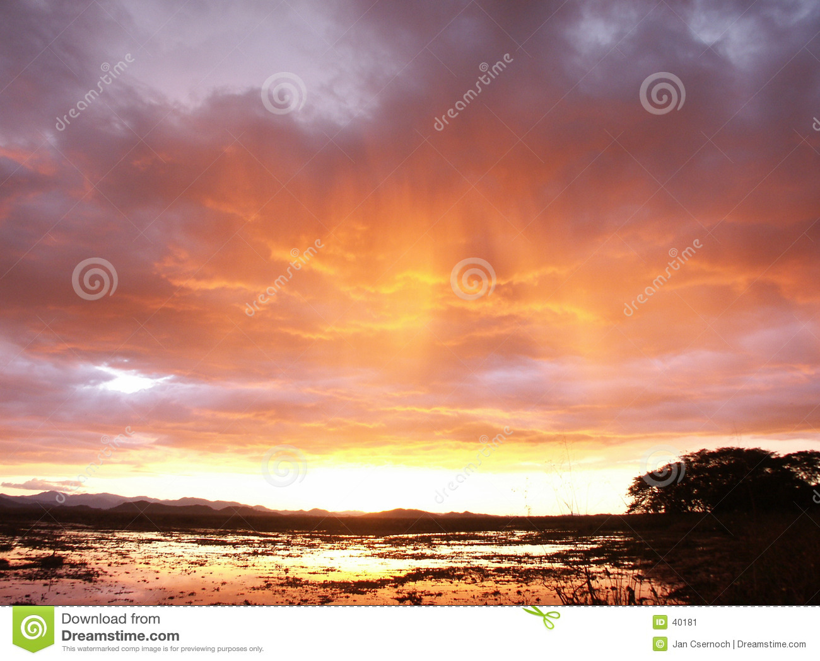 Stürmischer Himmel über Sumpf