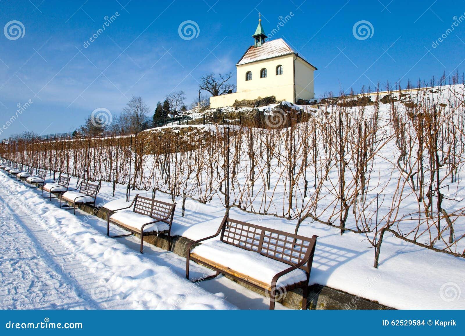 St克拉拉葡萄园, Troja,布拉格,捷克共和国