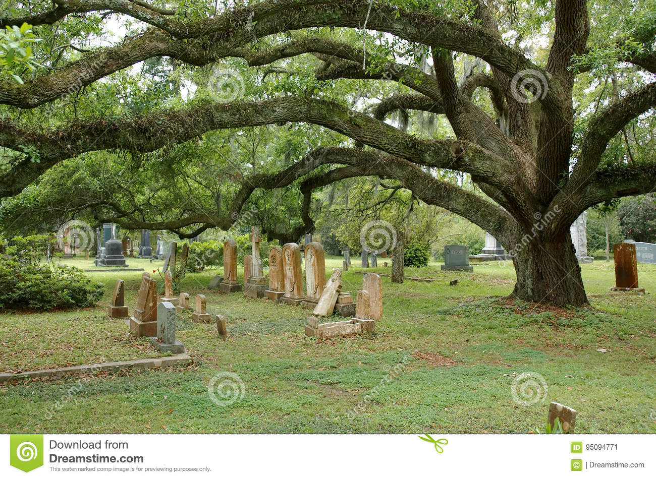 ST. FRANCISVILLE, LOUISIANA, USA - 2009: Tombs and oak trees at the cemetery located in Grace Episcopal Church