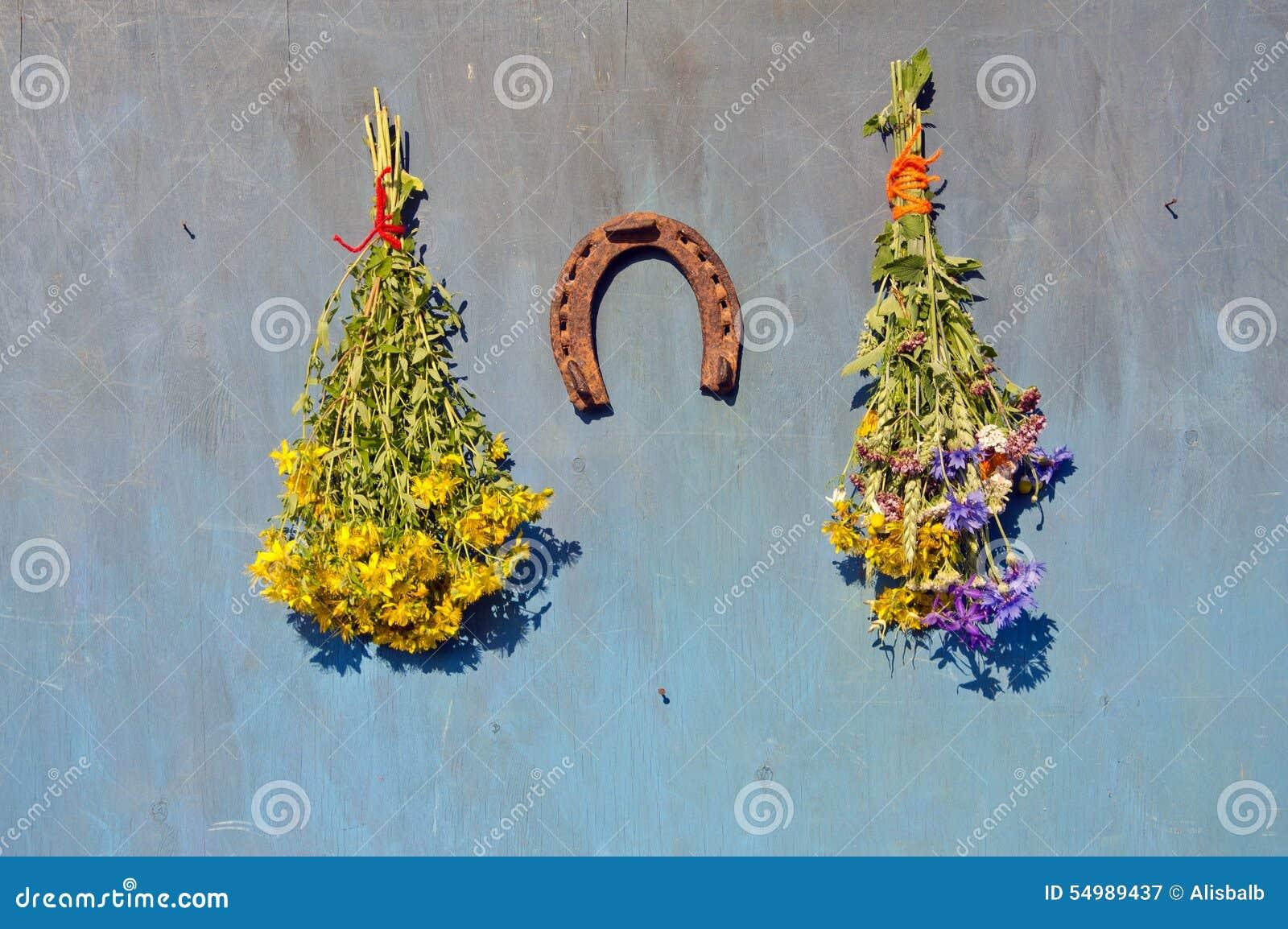 St Johns wort och olika medicinska blommor på väggen