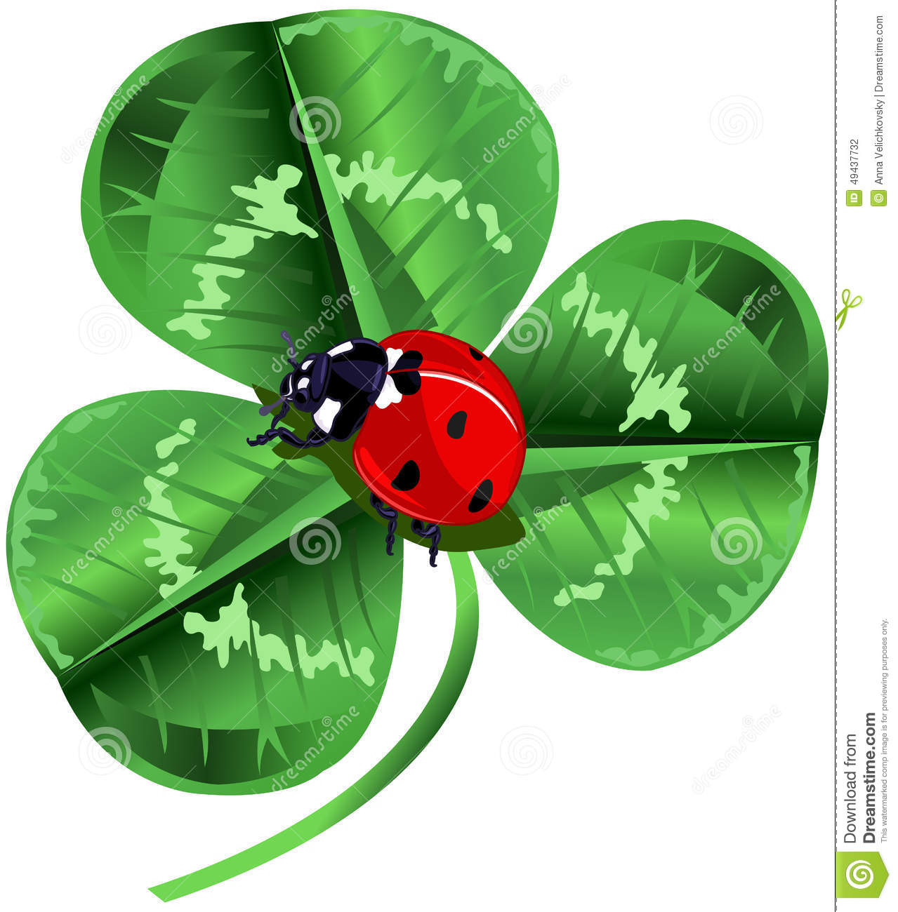 ... Day Three Leafed Clover And Ladybug Stock Vector - Image: 49437732