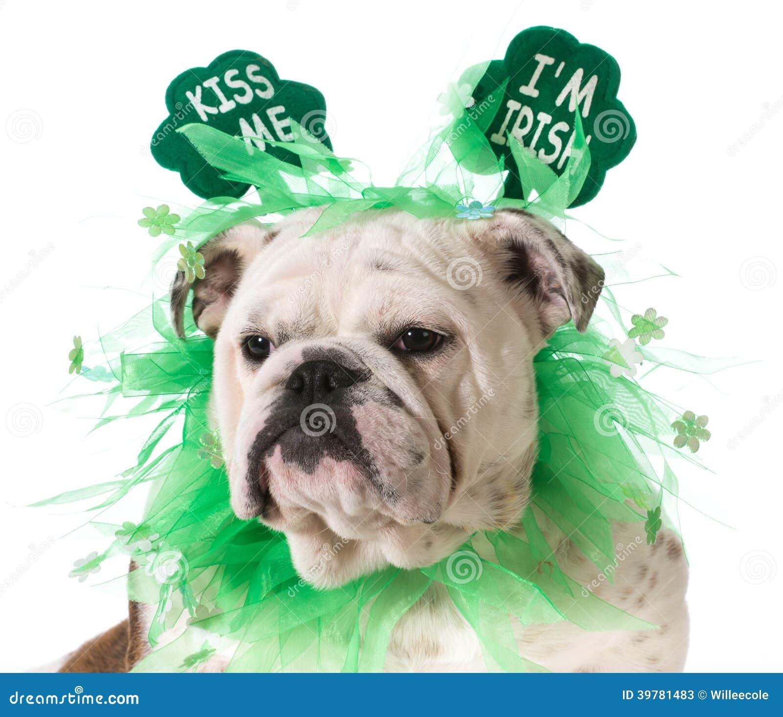 St. Patricks dnia pies