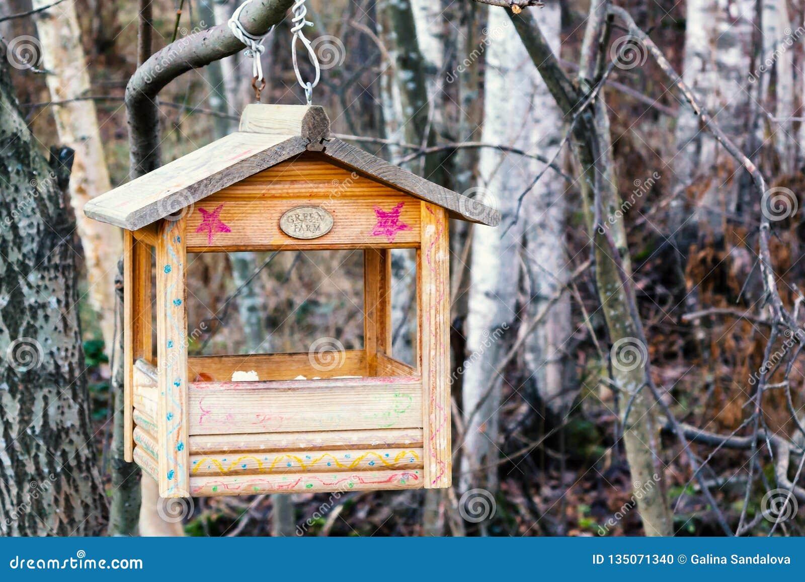 St Petersburg, Russia - 22 novembre 2018:: Alimentatore dell uccello sotto forma di una casa su un ramo nella foresta di inverno