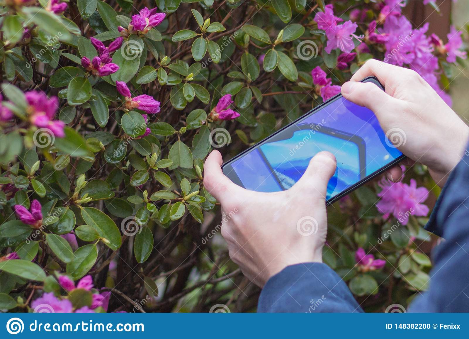 St Petersburg, RUSSLAND -02 im Mai 2019: Neue k?hle Konzepttelefon Samsungs-Falte auf dem Schirm eines Handys