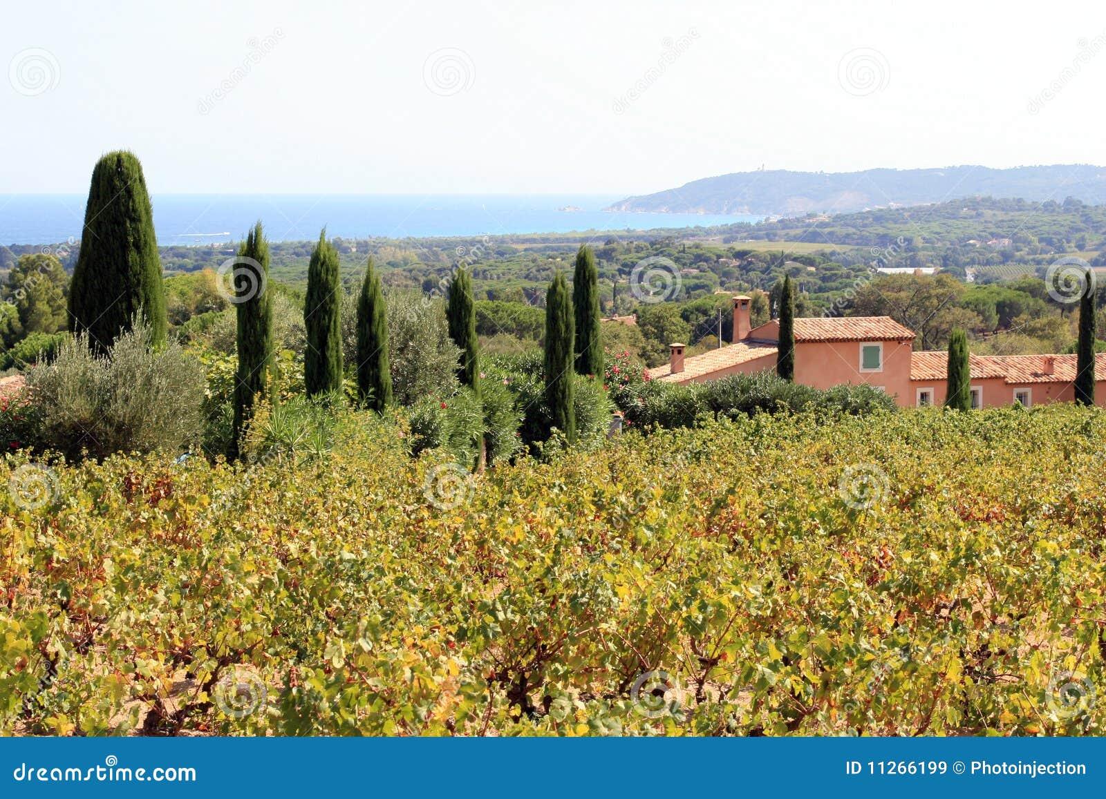 St. Tropez - Provence - France