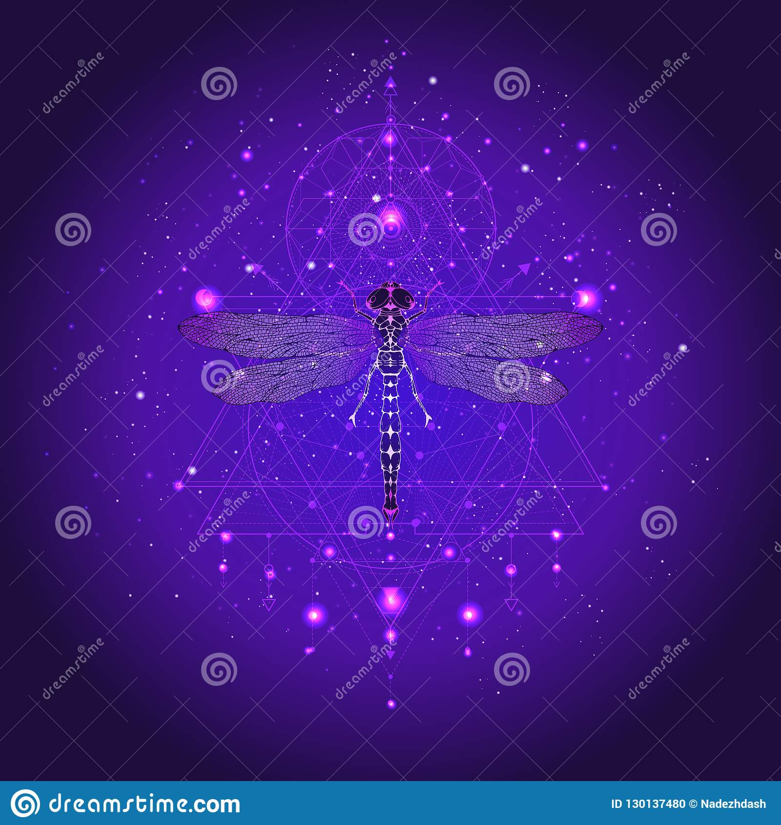 Vector Illustration With Hand Drawn Dragonfly And Sacred