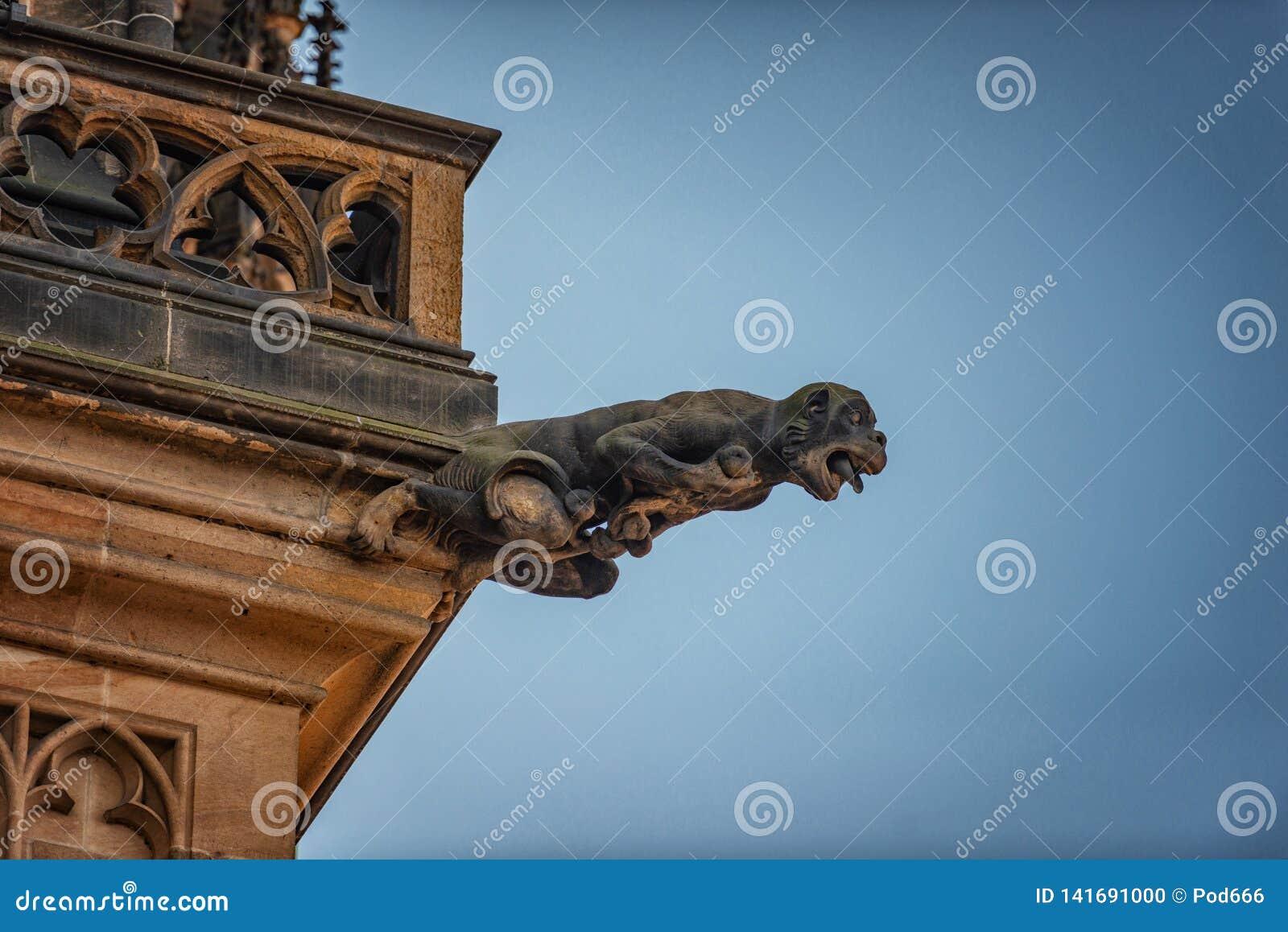 St Vitus de gargouilles van de Tsjechische republiek van kathedraalpraag