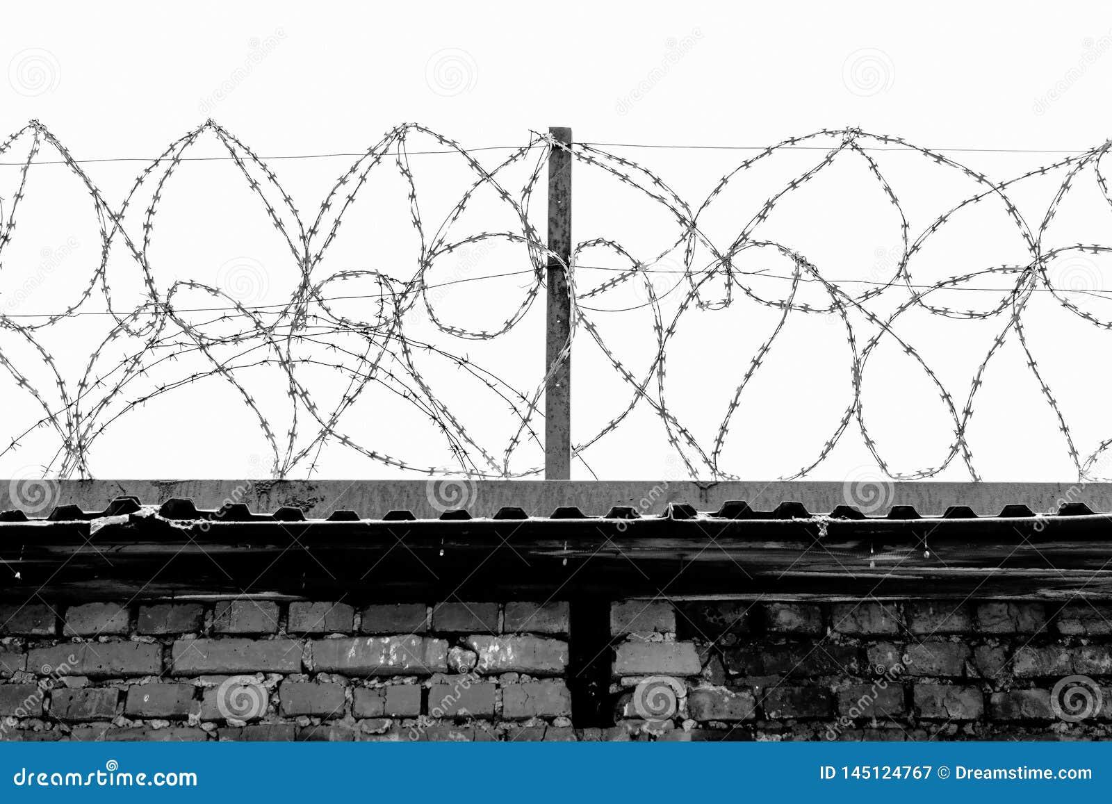 Staalbundels van gerold prikkeldraad op de omheining van de gevangenis tegen de grijze hemel