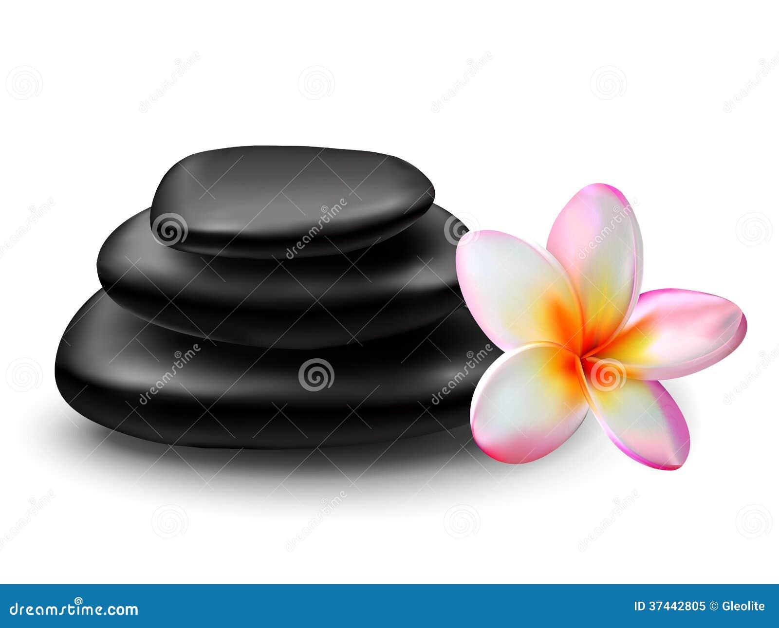 Stack of black zen stones with plumeria flower stock for Salon zen