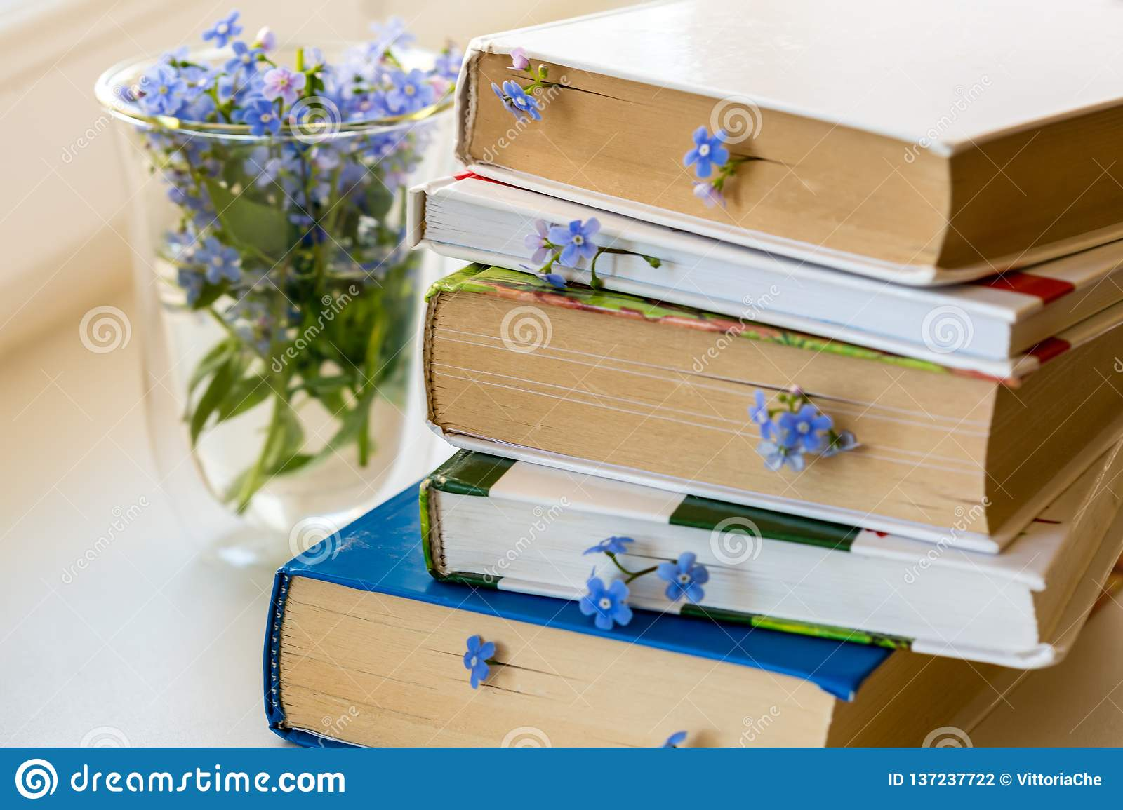 Stack of books with small blue flowers between pages on the white table