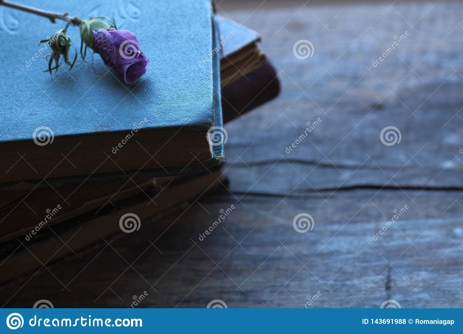 Stack of old books with dried purple flower puffy on a wooden background