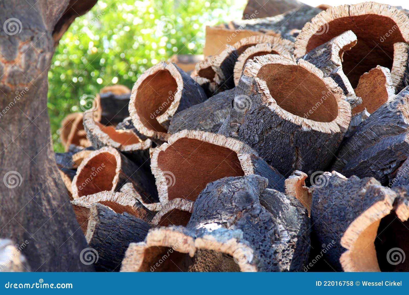 Stacked bark near cork oak in Alentejo, Portugal