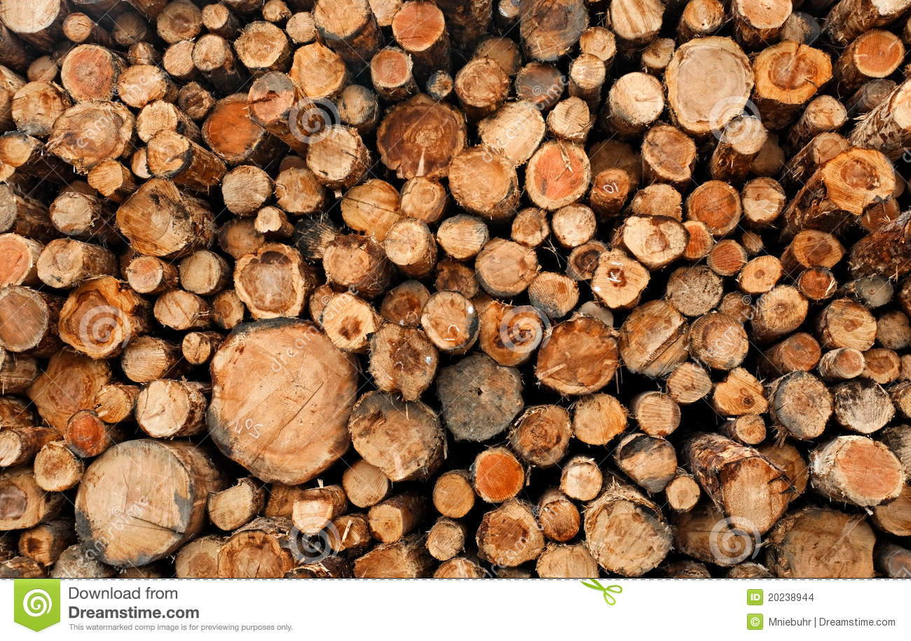 Stacked cut raw timber wood logs stock images image