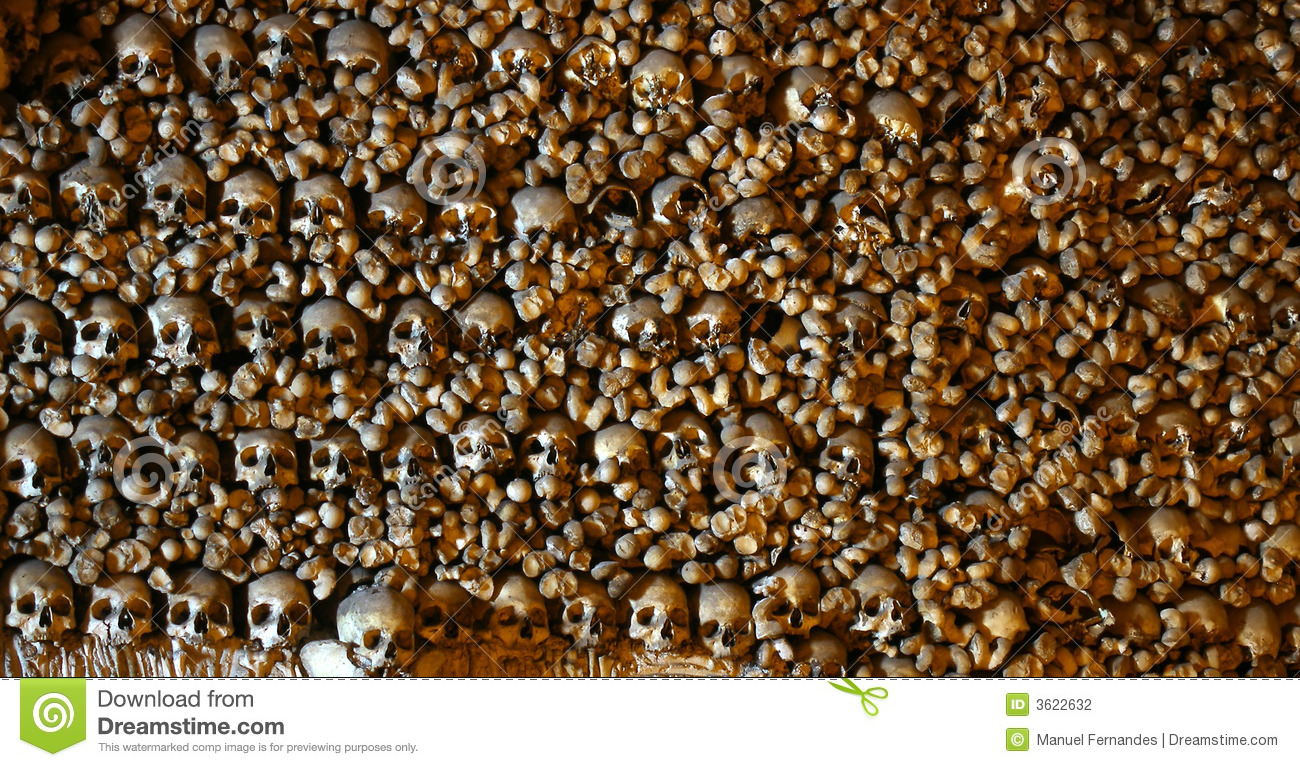 Stacked Human Bones Stock Photography - Image: 3622632