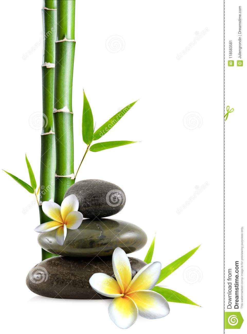 Stacked pebbles, frangipani flowers and bamboo stem and leaves
