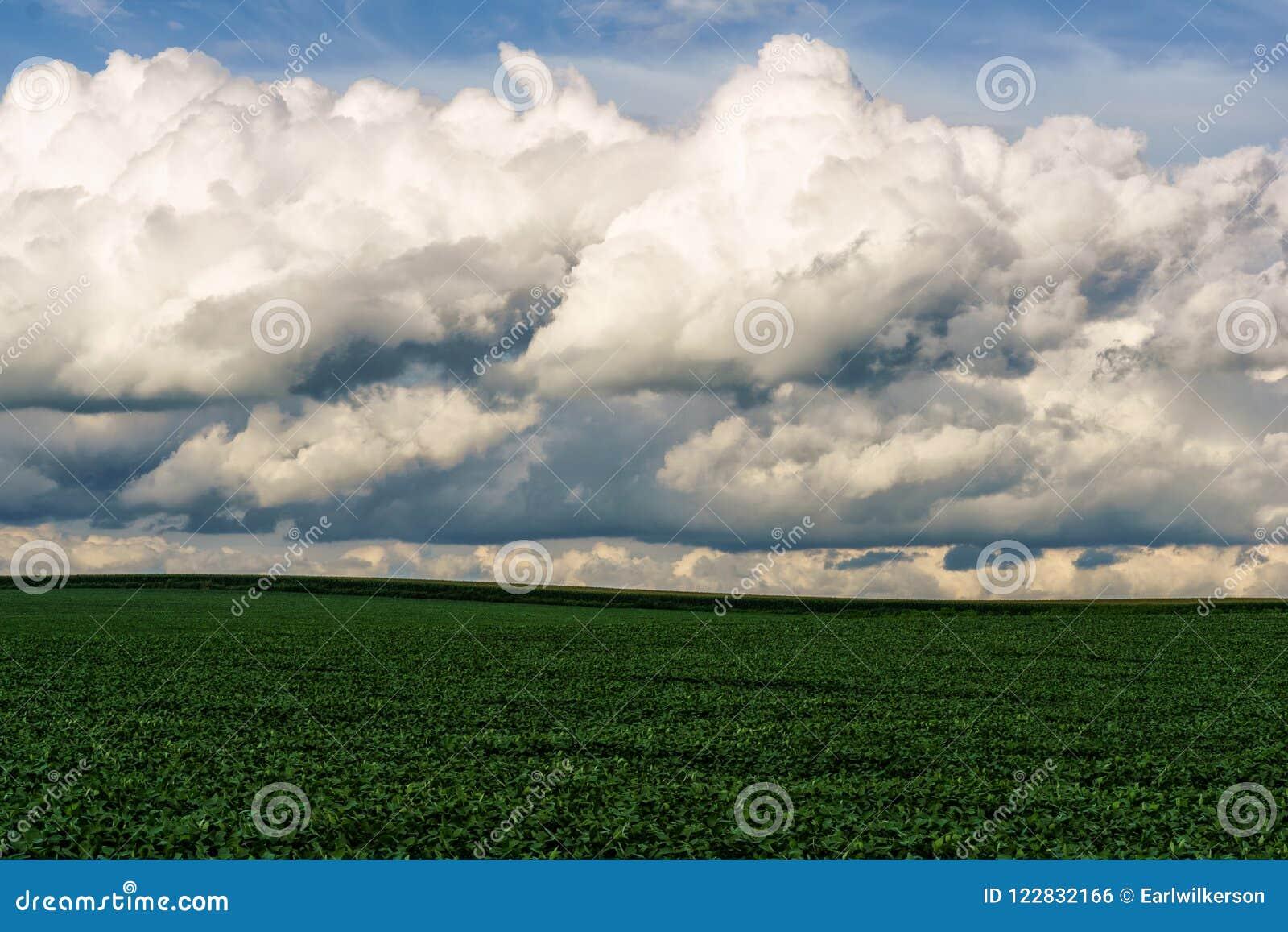Staczać się Chmurnieje Nad środkowo-zachodni polem