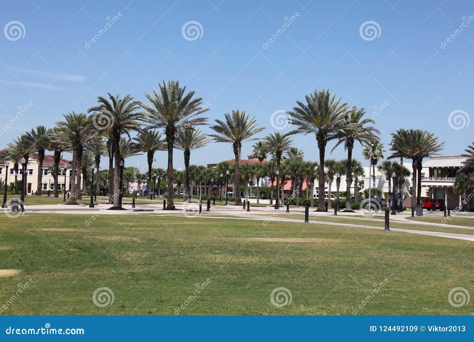Stad av den jacksonville stranden i florida