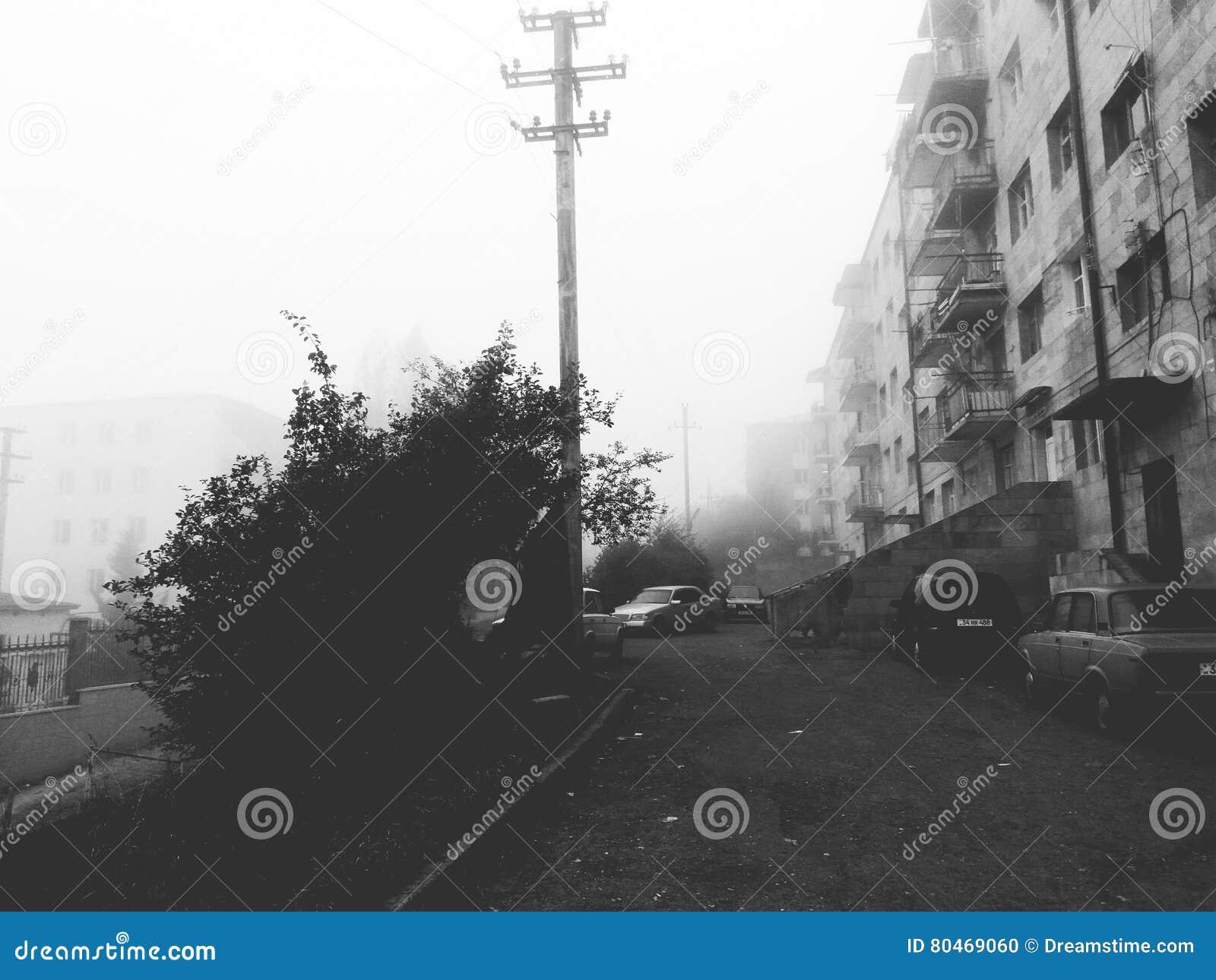 Stad och mist