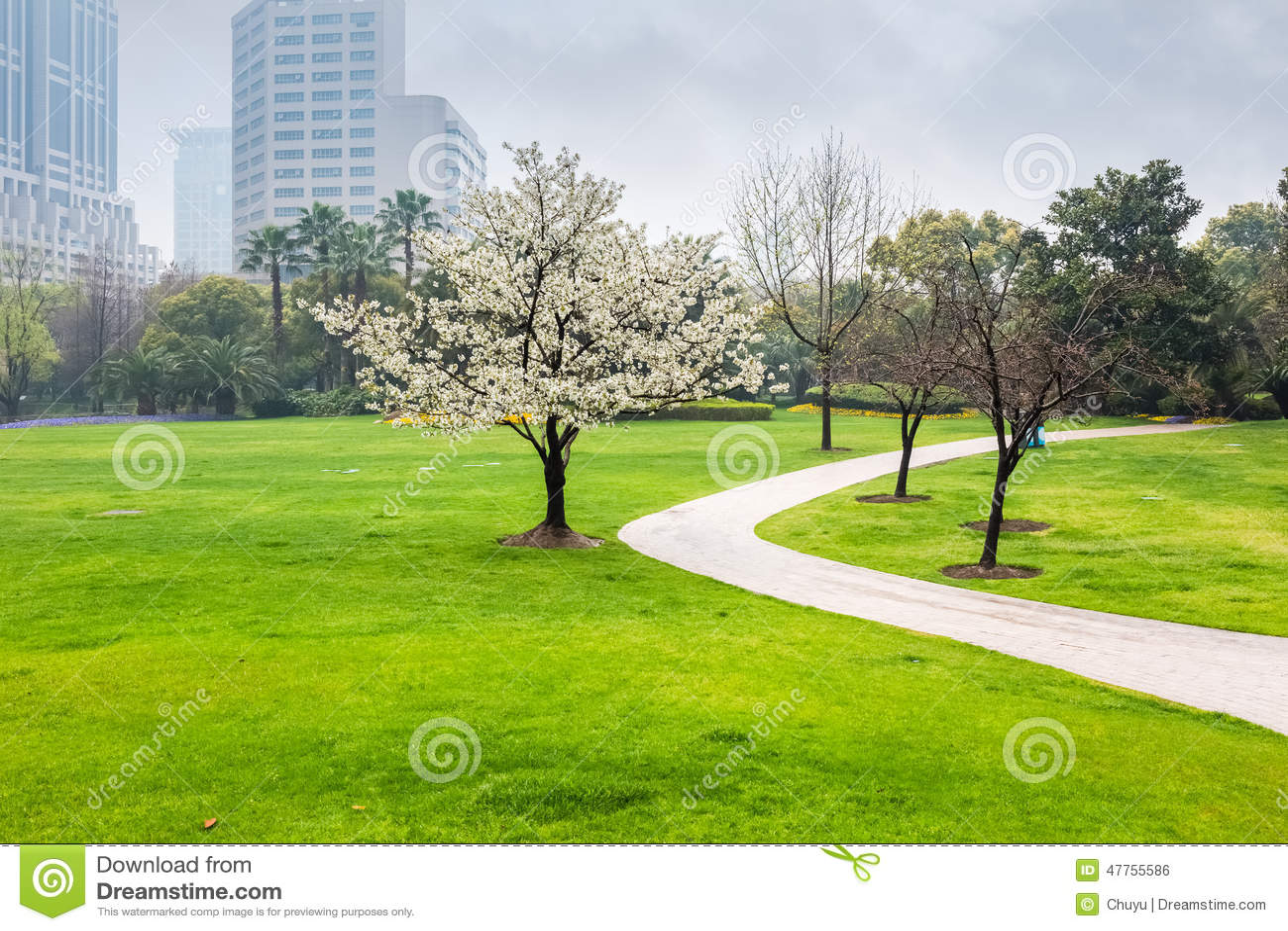 Stadspark in de lente