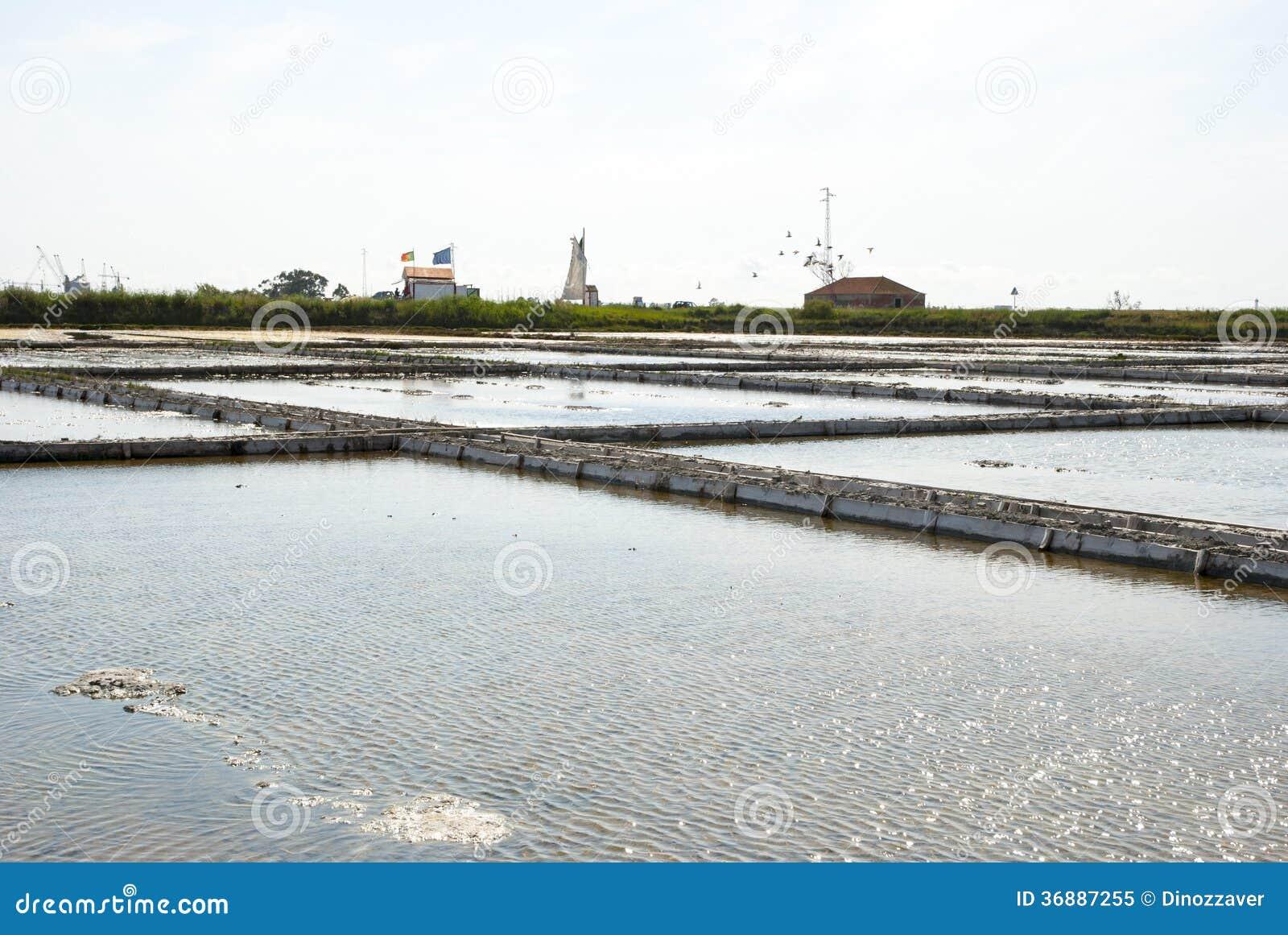 Download Stagni Di Evaporazione Dell'azienda Agricola Del Sale, Portogallo Immagine Stock - Immagine di portugal, vaschetta: 36887255