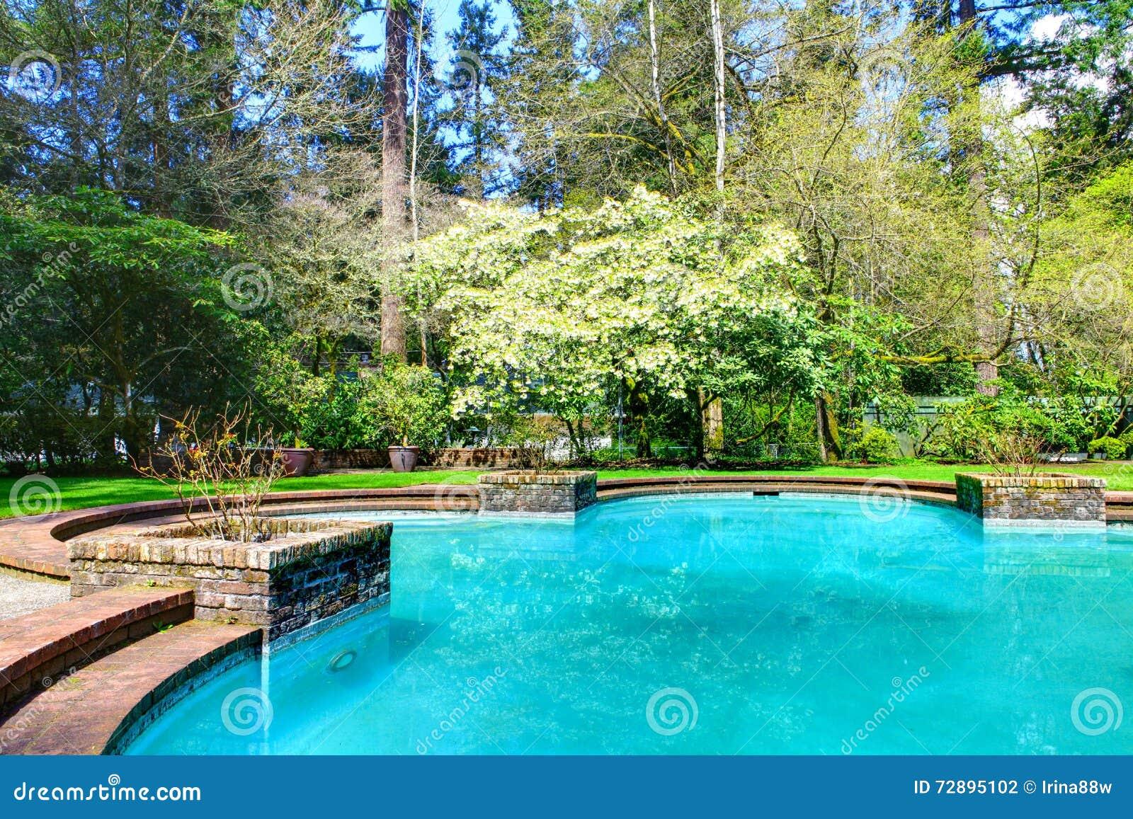 Stagno adorabile nel giardino nel giardino di lakewood for Stagno da giardino