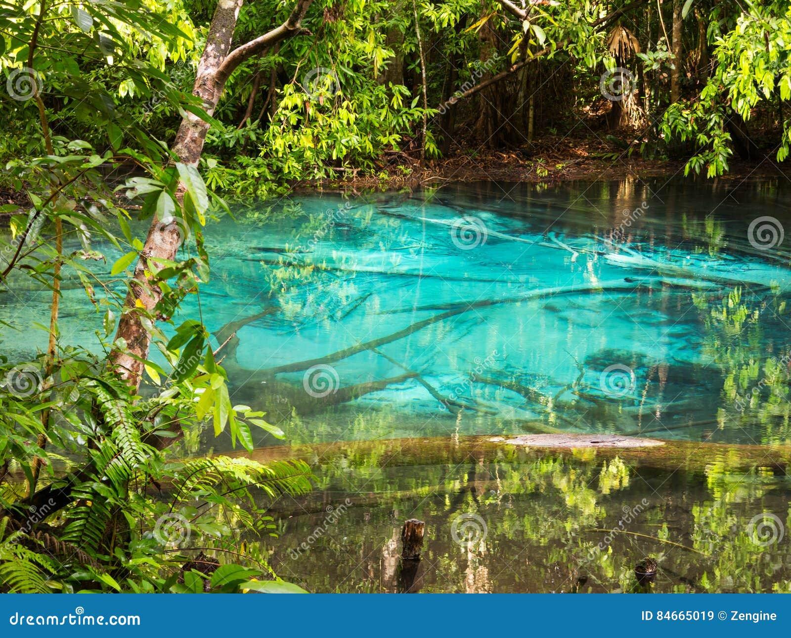 Stagno blu piccolo lago naturale con acqua del turchese for Piccolo stagno