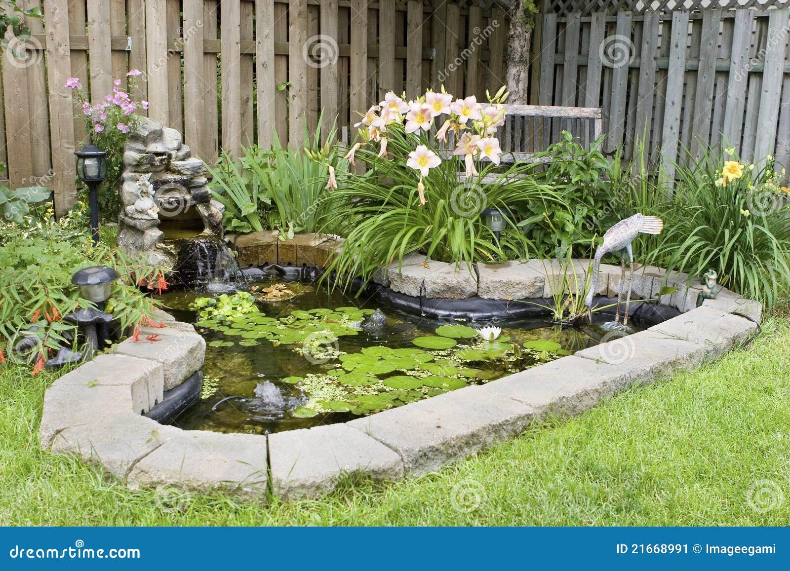 stagno del giardino immagine stock immagine di back