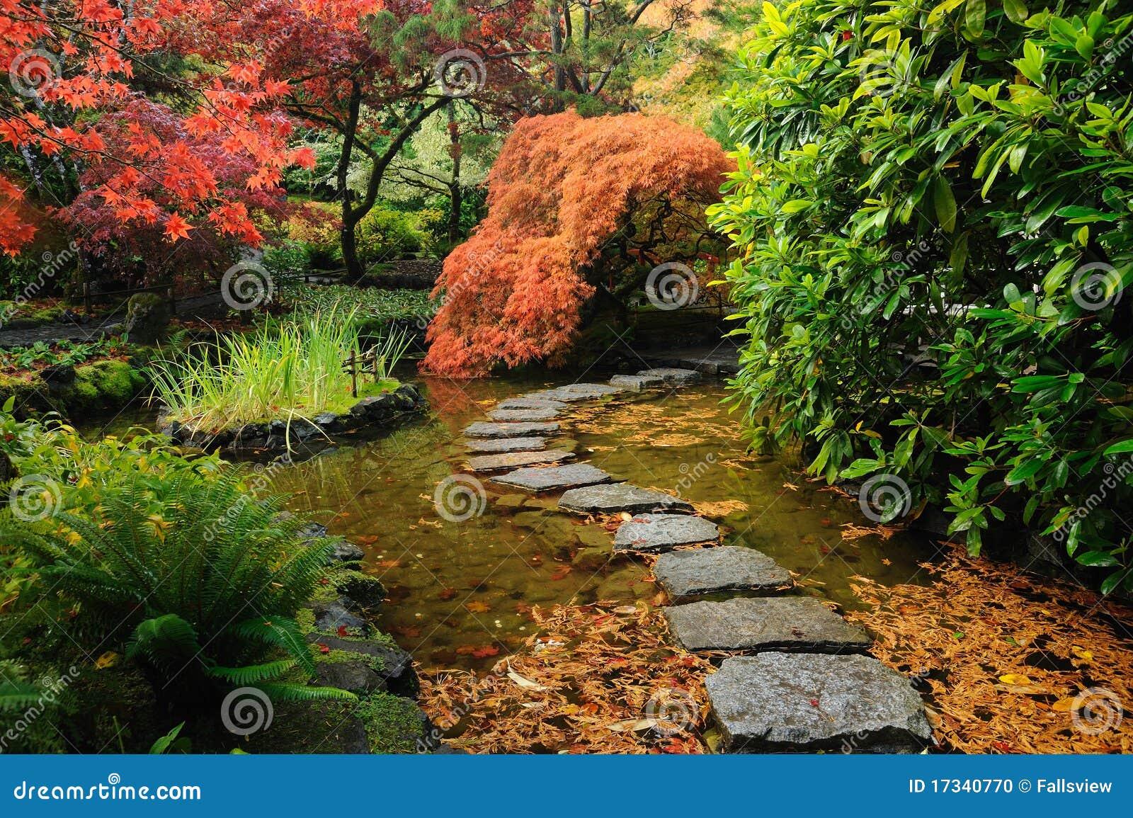 Stagno giapponese del giardino fotografia stock immagine for Stagno in giardino