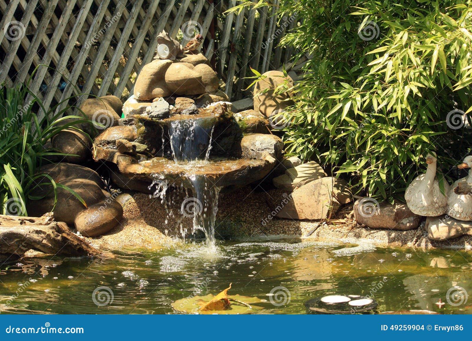 Stagno giapponese del giardino con la cascata ed i pesci for Pesci da stagno